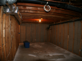 corin-basement-living-room-before
